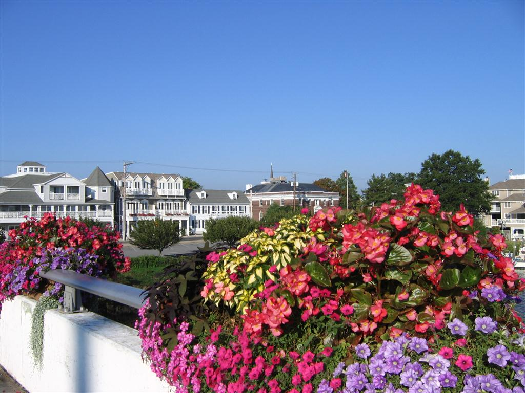 retire to historic lewes de real estate and homes for